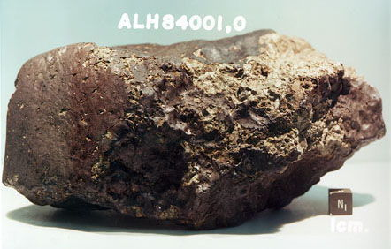 The famed Mars meteorite ALH84001.