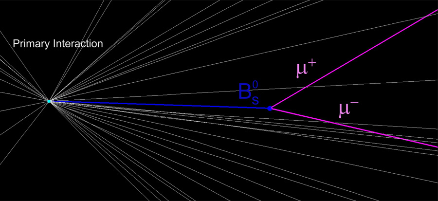 Rare Particle Find May Cast Doubt on Popular Physics Theory