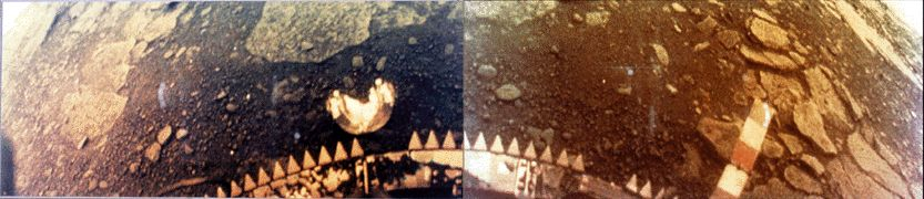 Surface of Venus by Venera 13