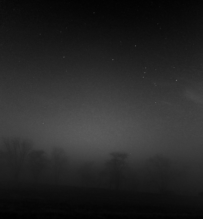Orion Hunting in Fog