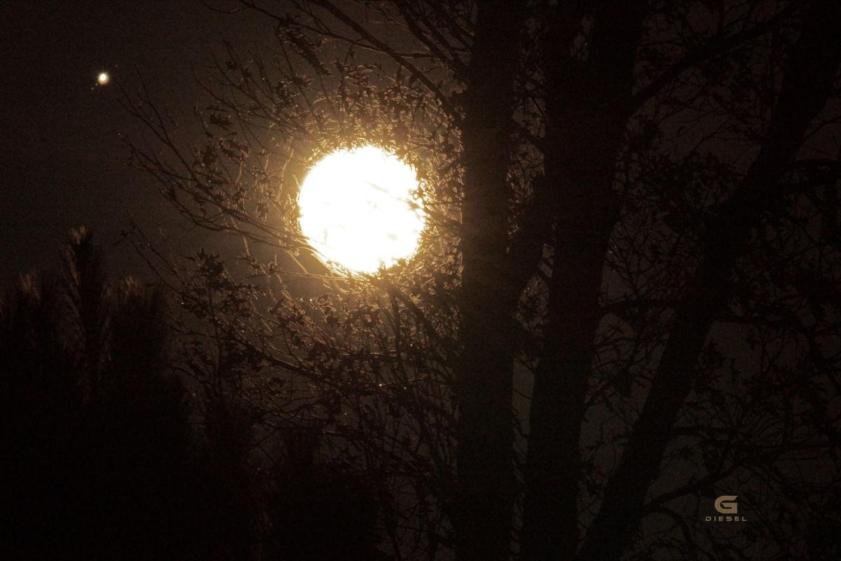 Moon and Jupiter Over North Carolina