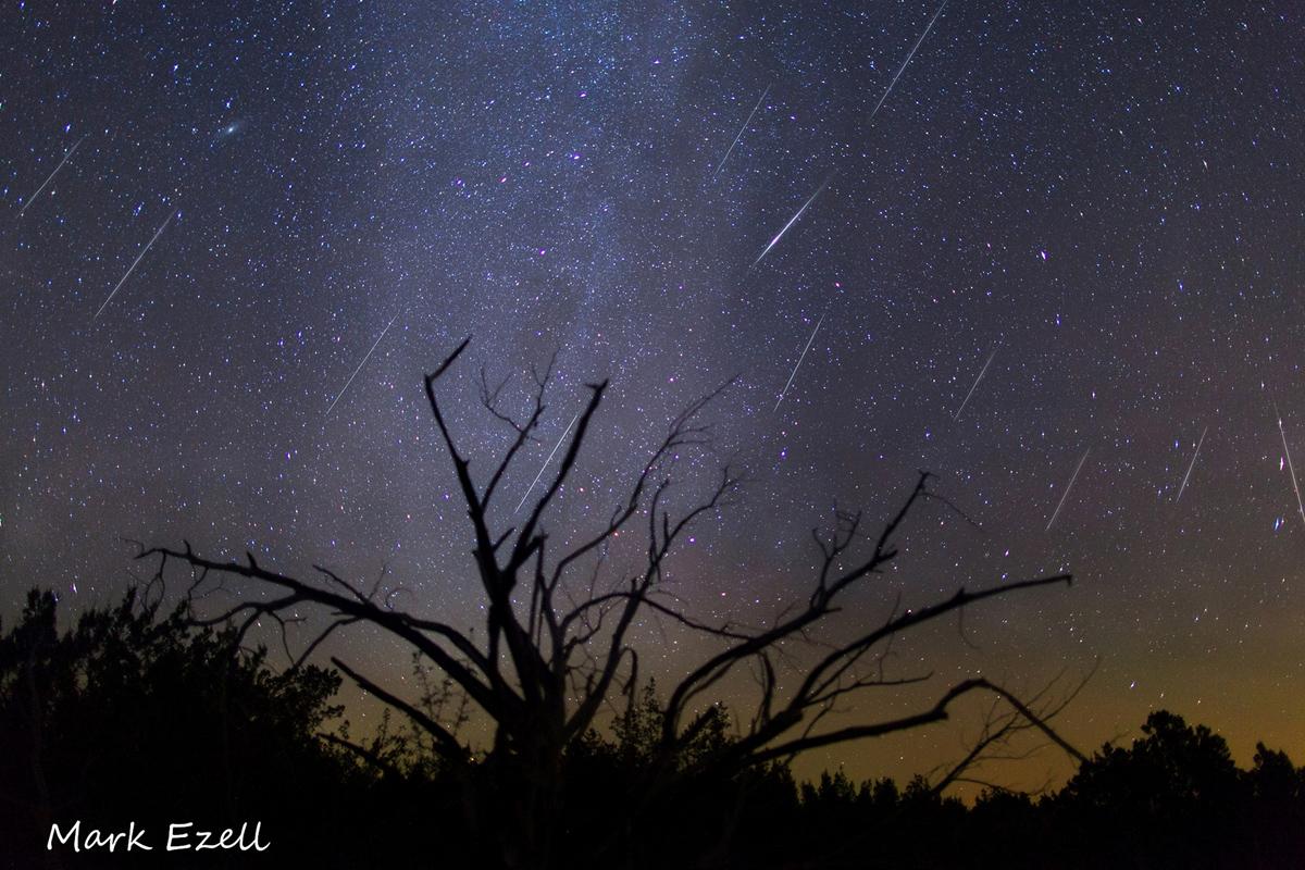 Composite Image of Gemind Meteors Over Lometa, TX #2