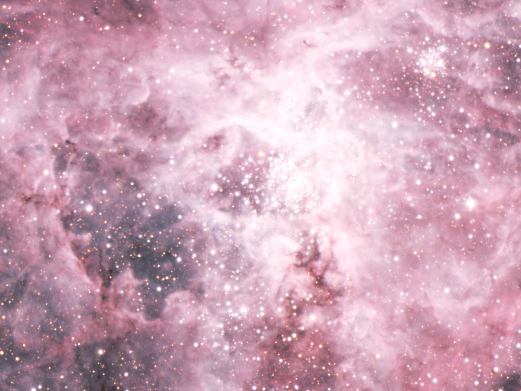 Central Area of the Tarantula Nebula