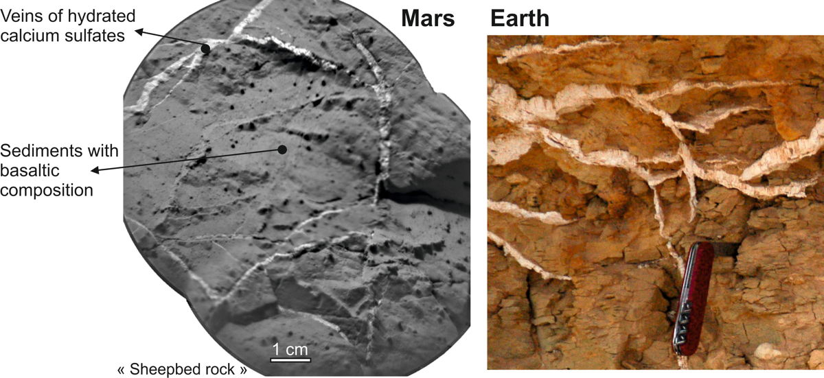 Veins in Rocks on Mars and Earth