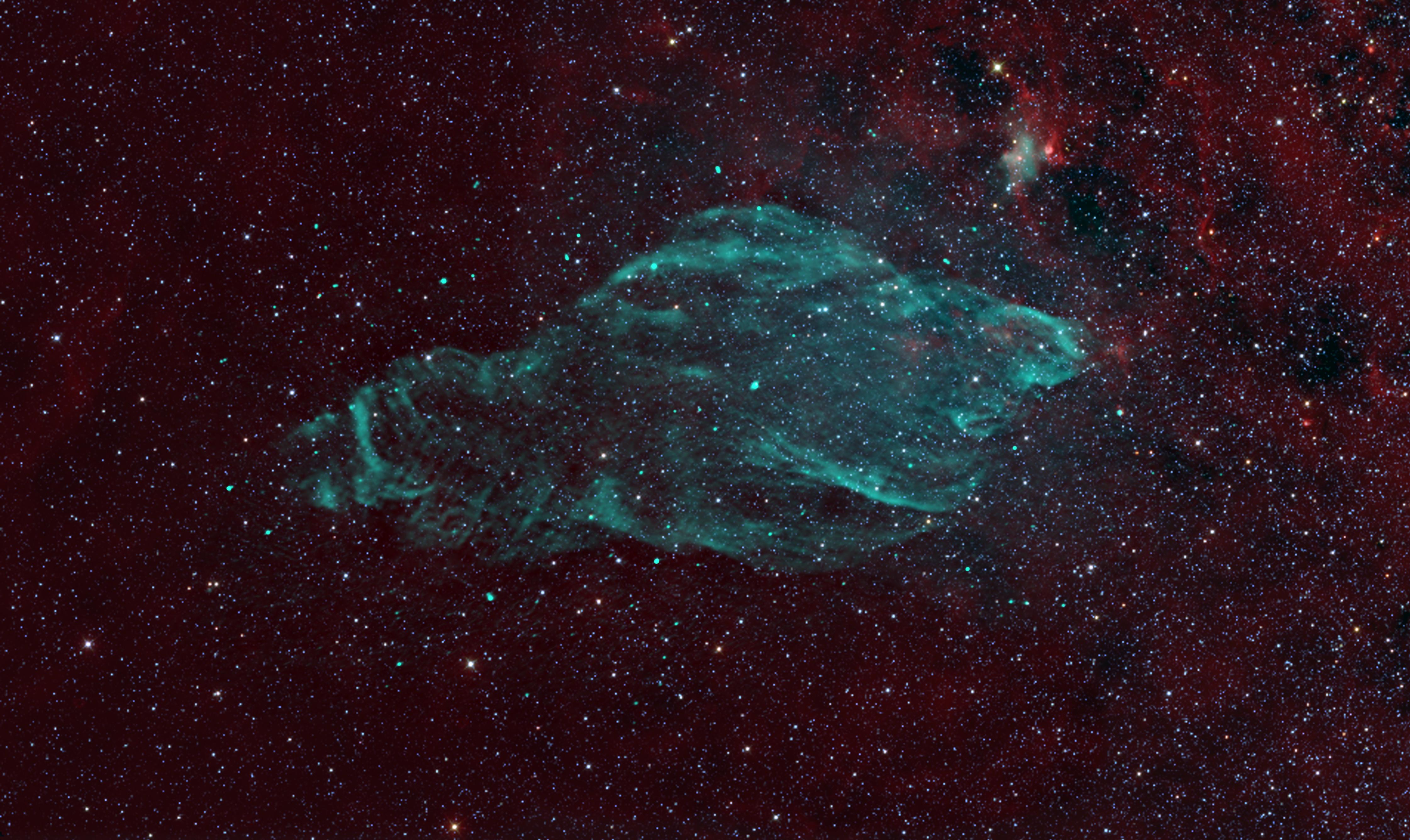 Celestial Wonder Looks Uncannily Like a Manatee