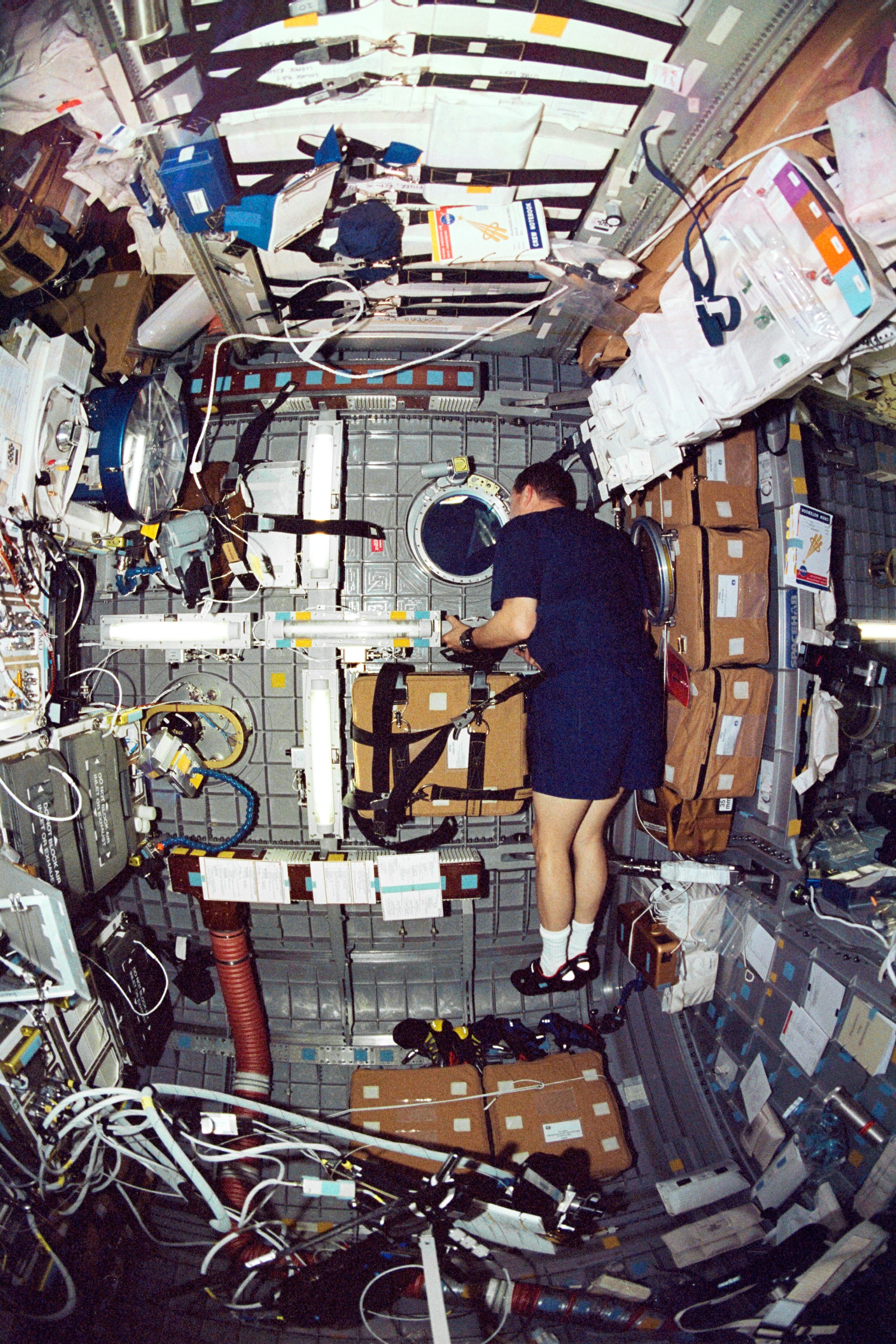 Astronaut David M. Brown, STS-107 Mission Specialist