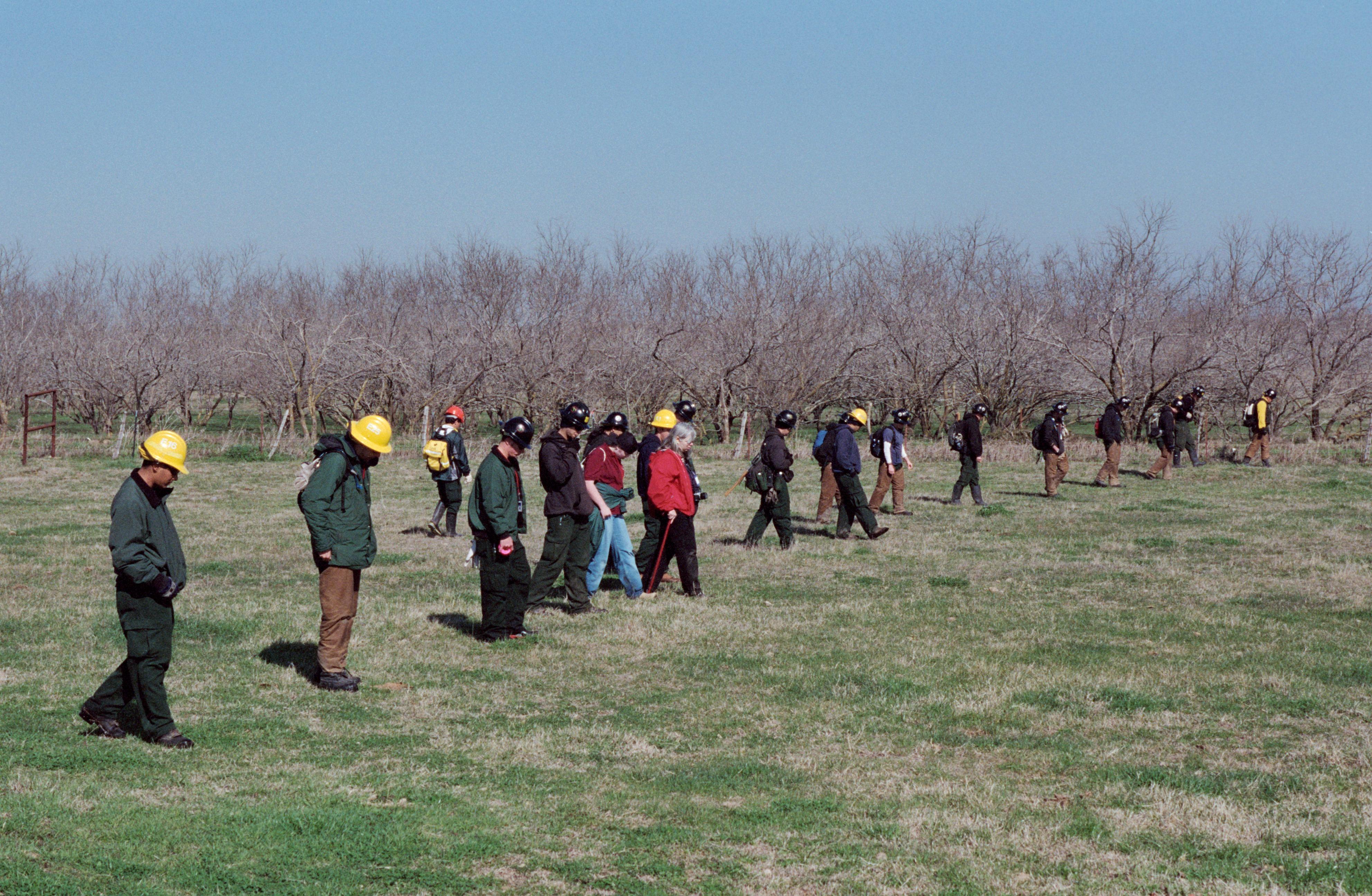 Volunteer Searchers Scour for Debris