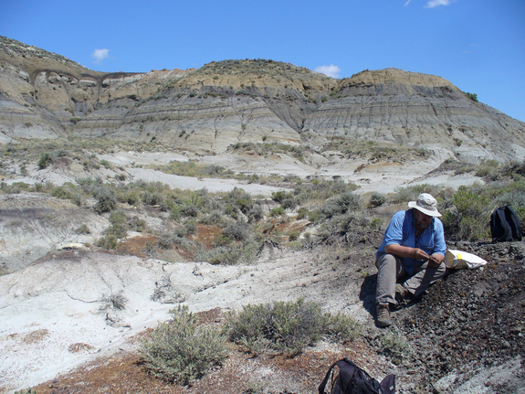 Geochronologist Paul Renne collects a volcanic ash sample from a coal bed within a few  centimeters of the dinosaur extinction horizon. A study by Renne and colleagues confirmed the link between the Chicxulub asteroid impact and dinosaur extinction 65 million years ago. Image released Feb. 7, 2013.