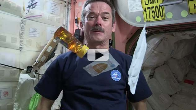 How to Make a Peanut Butter and Honey Sandwich in Space