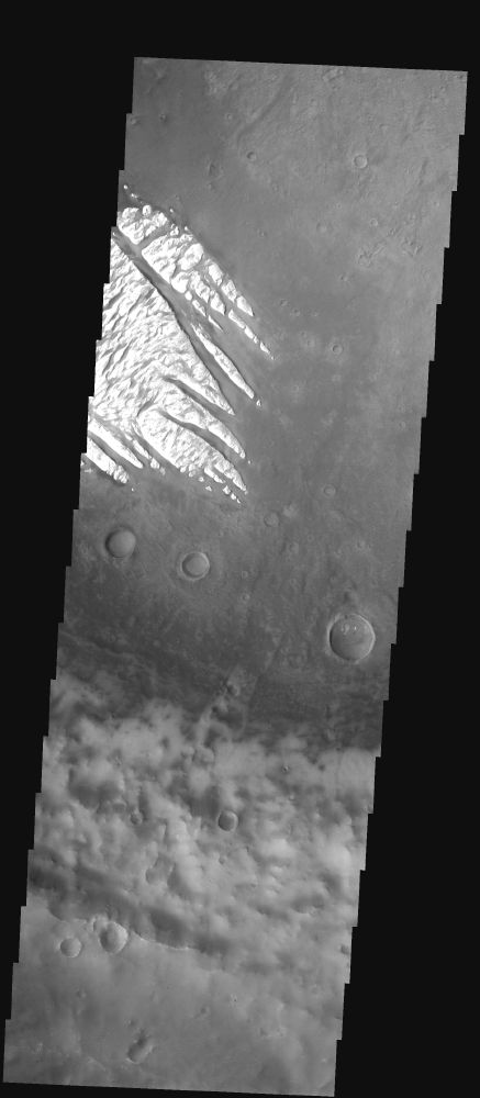 Martian Dust Storms