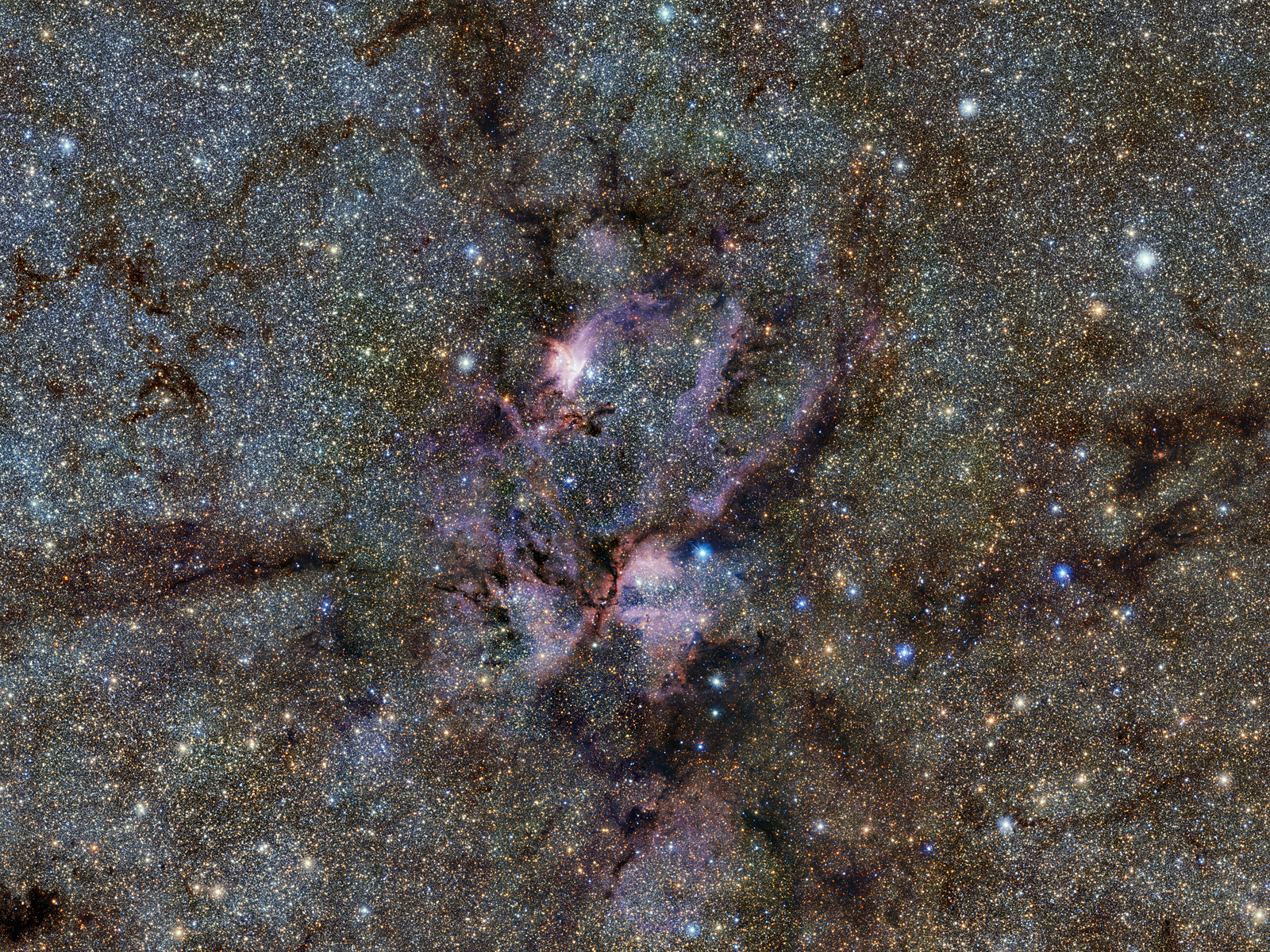 Lobster Nebula Seen with ESO's VISTA Telescope 1600