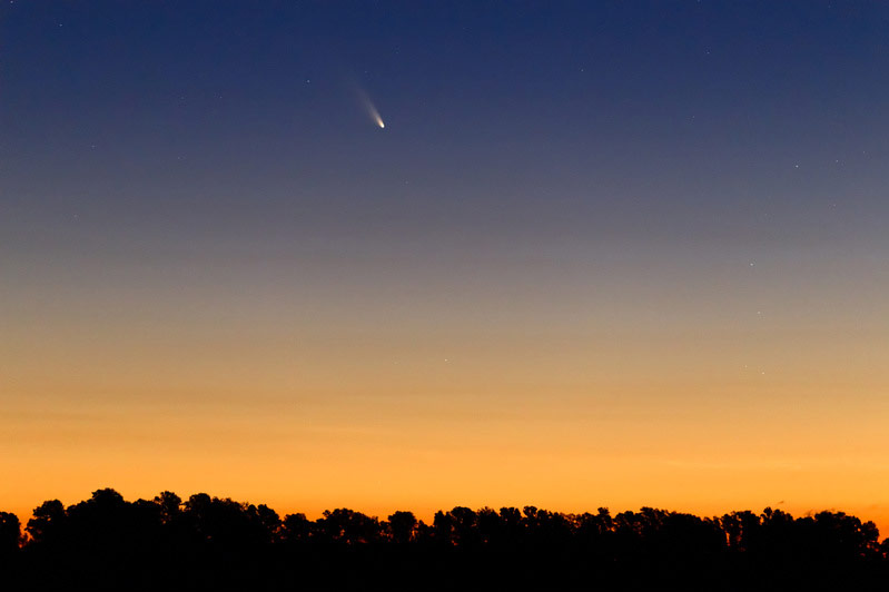Comet Pan-STARRS Seen in Buenos Aires #2