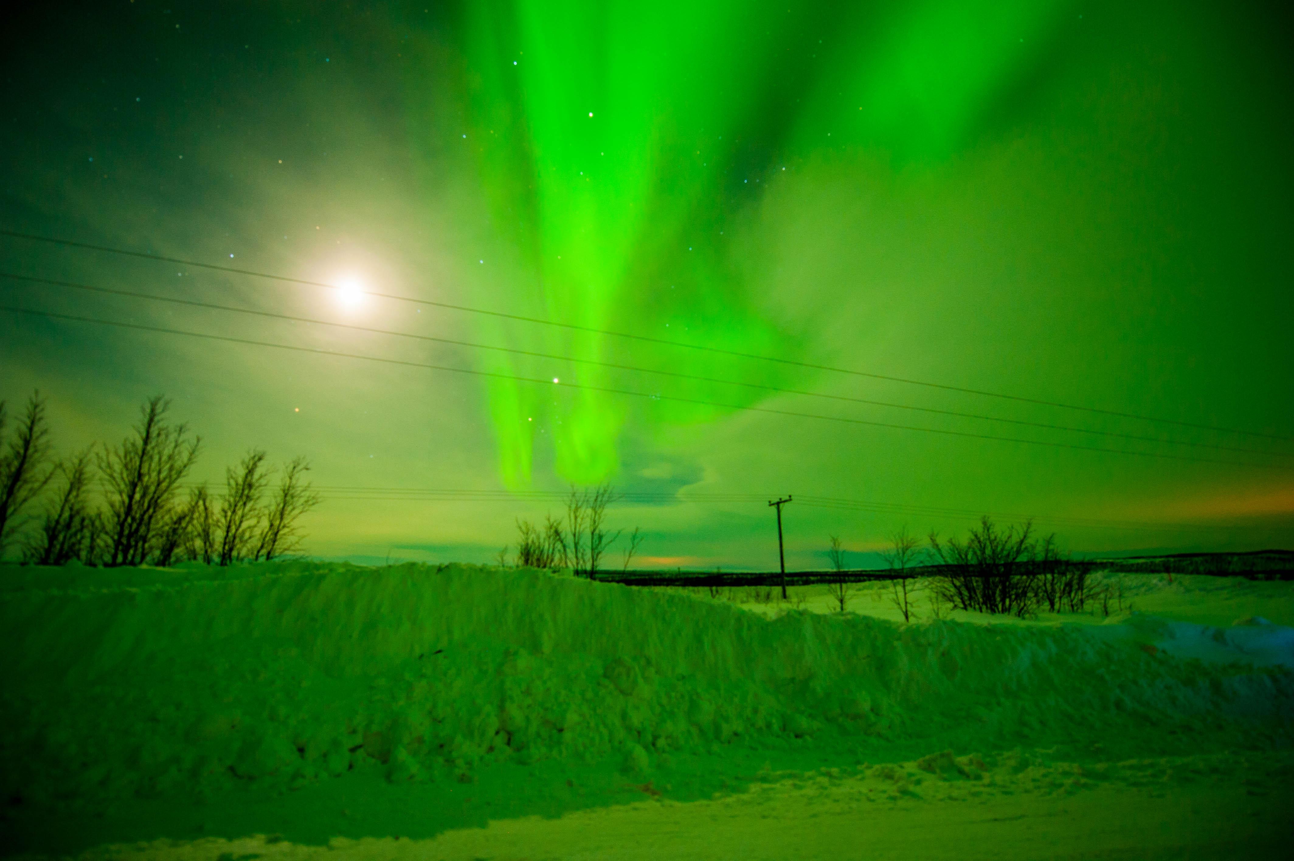 Aurora Over Alta, Norway #8