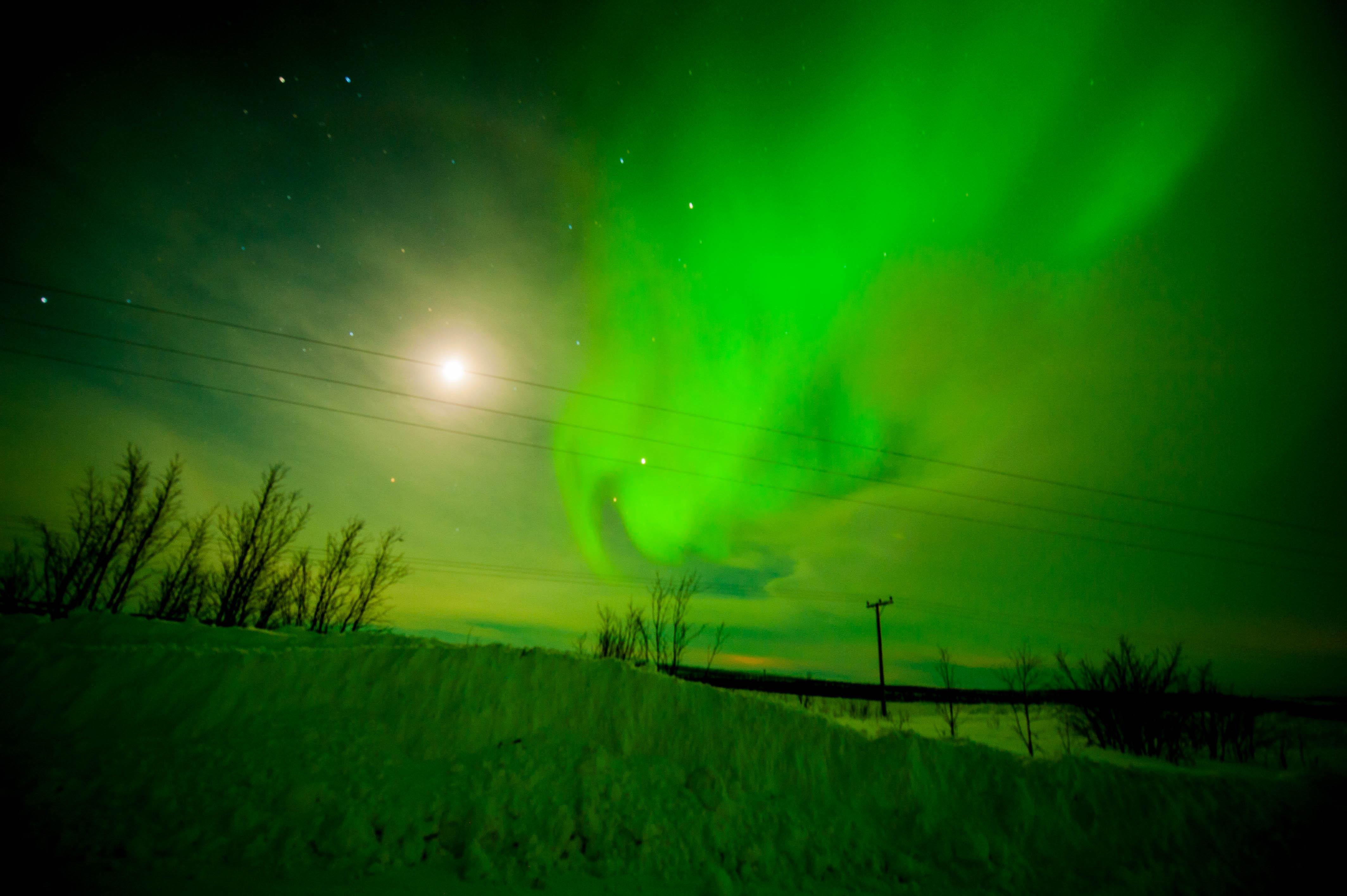 Aurora Over Alta, Norway #9