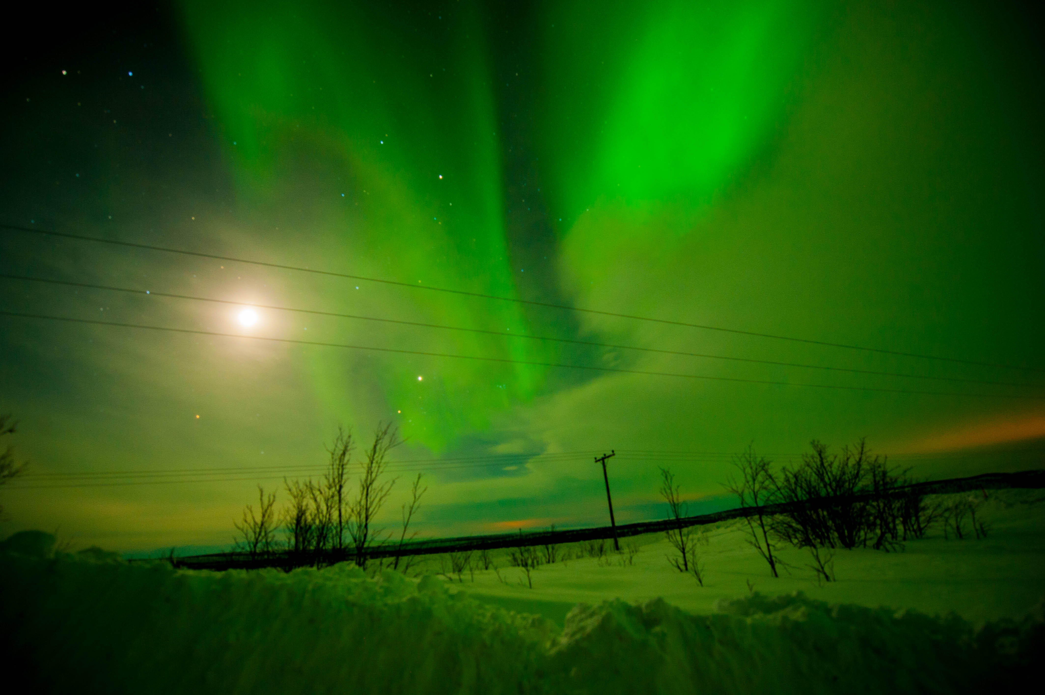 Aurora Over Alta, Norway #11