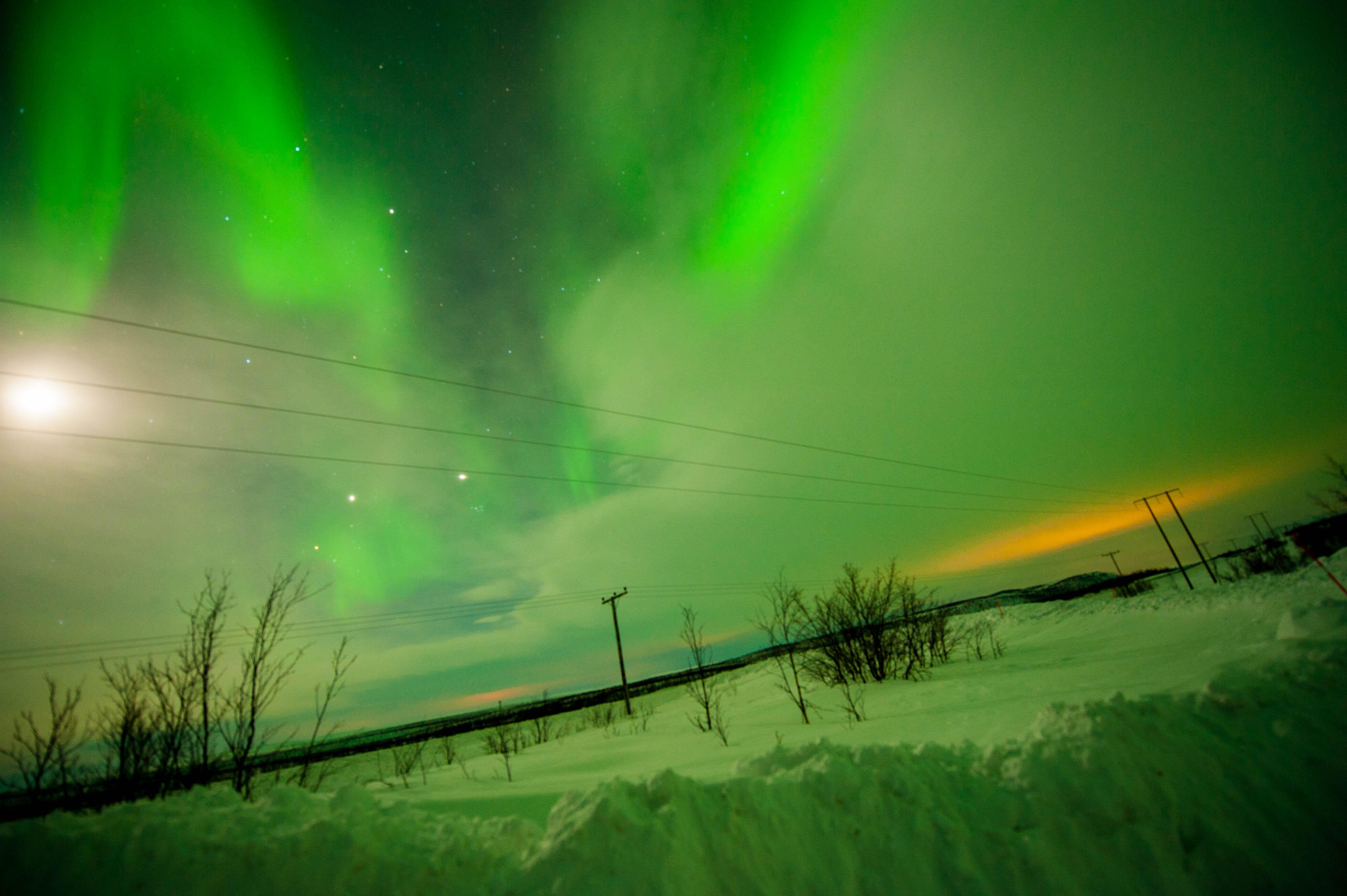 Aurora Over Alta, Norway #12