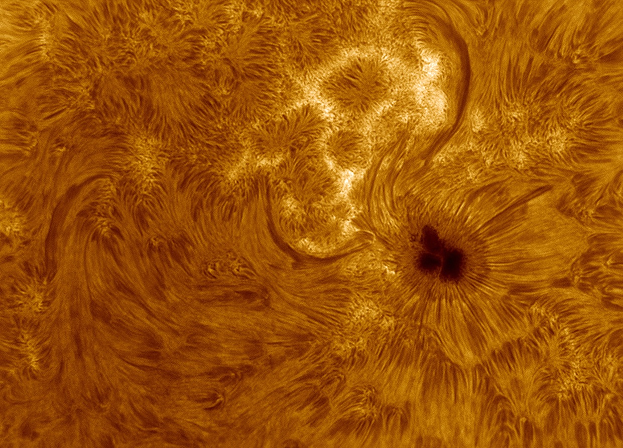 Sunspot Beauty Captured by Solar Shutterbug (Photo)