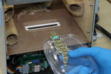 Geckos will fly on the Russian Bion M1 space mission for the purposes of biological research.