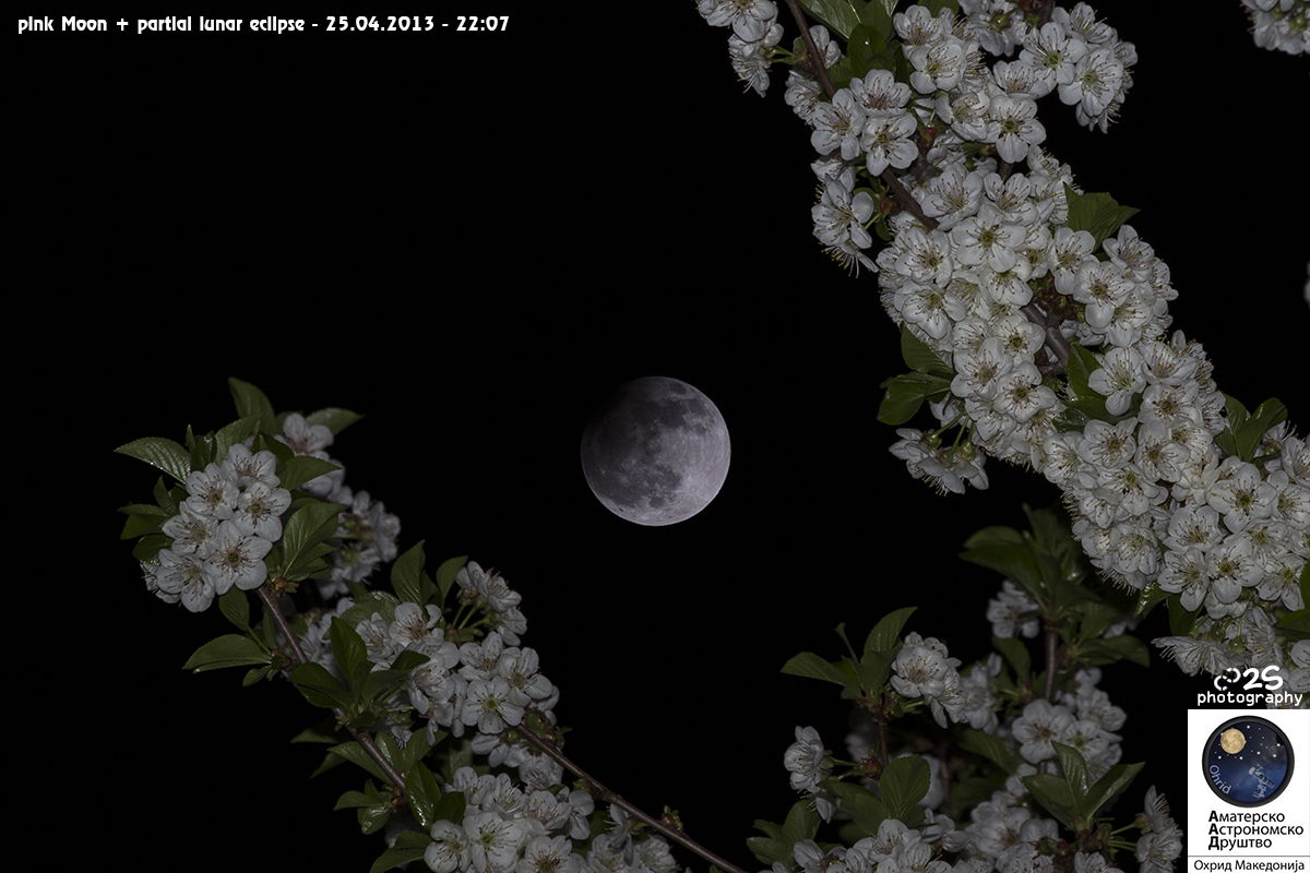 Partial Lunar Eclipse and Flowering Trees Over Macedonia