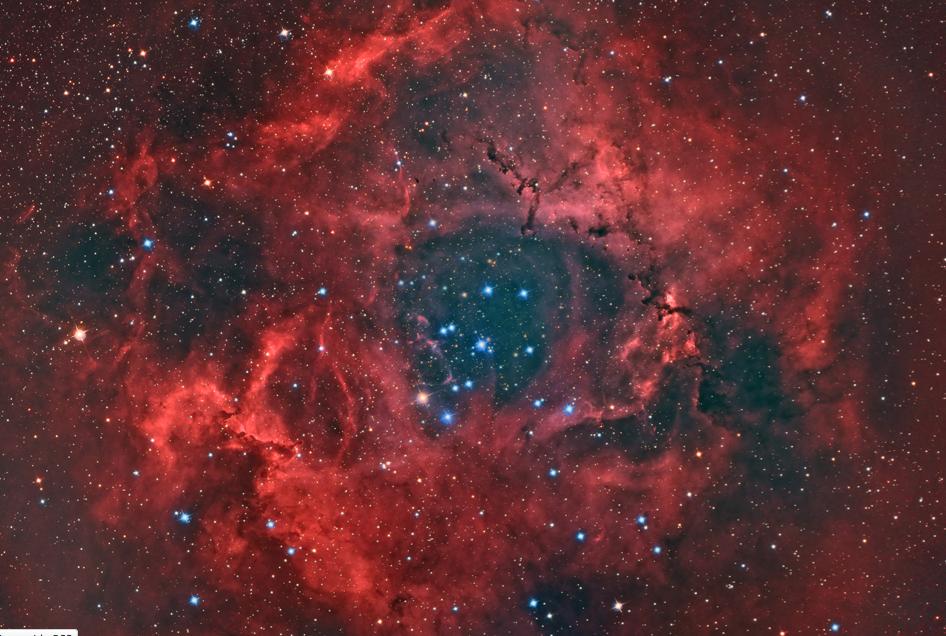 Rosette Nebula Blooms In Amazing Stargazer Photo