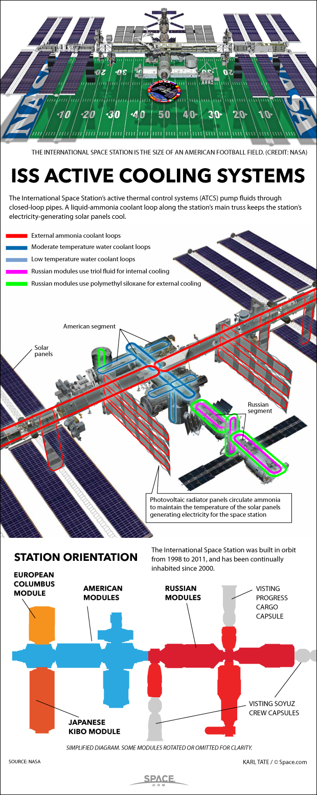 How ISS's Ammonia Cooling System Works (Infographic)