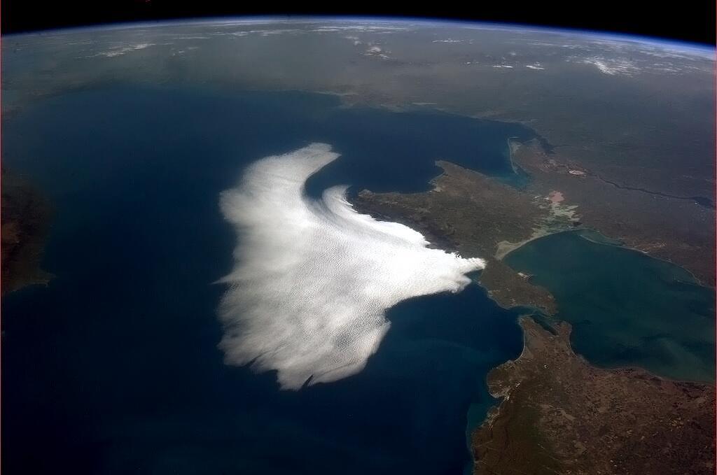 'White Bird on the Black Sea'