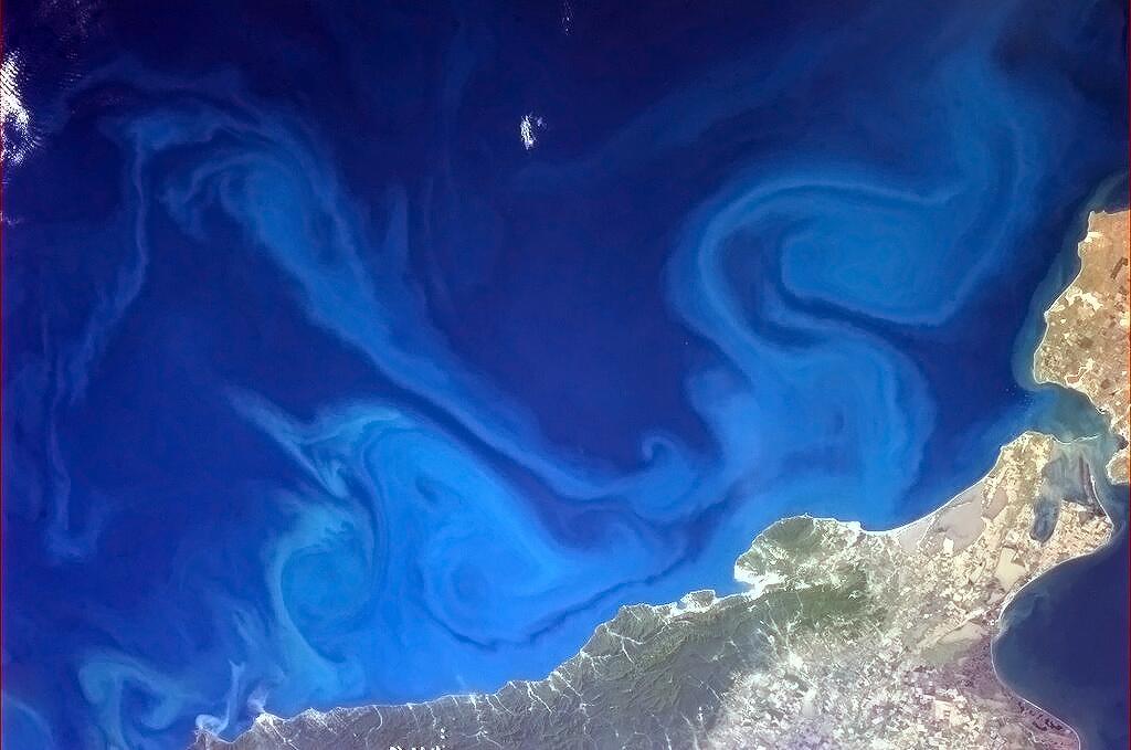 Surreal Swirls in the Black Sea