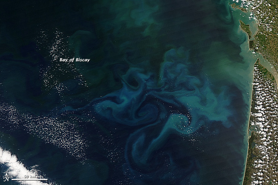 NASA's Aqua satellite captured this natural-color image of phytoplankton blooms on April 20, 2013, in France's Bay of Biscay.