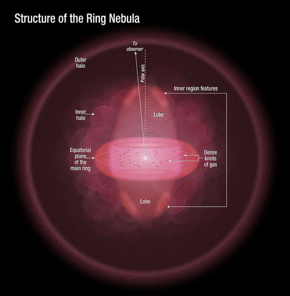 This illustration depicts a sideways view of the Ring Nebula, as deduced by astronomers using new Hubble observations. The doughnut-shaped feature in the center of the graphic is the main ring. The lobes above and below the ring comprise a football-shaped structure that pierces the ring. Dense knots of gas are embedded along the ring's inner rim. Image released May 23, 2013.