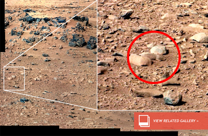 Is Mars Infested With Pareidolia Rats?