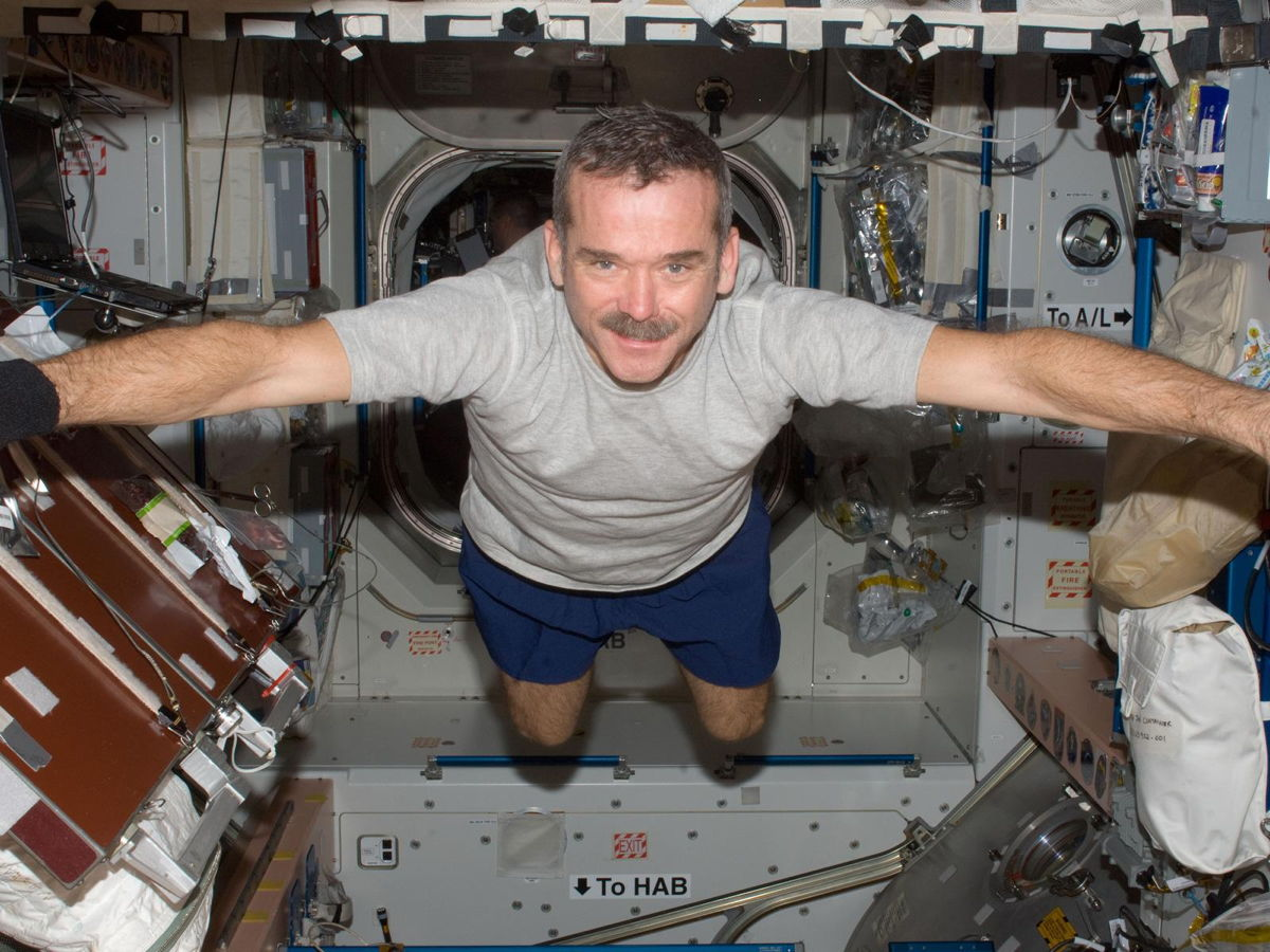 Astronaut Chris Hadfield Visits SPACE.com Thursday: Questions Wanted