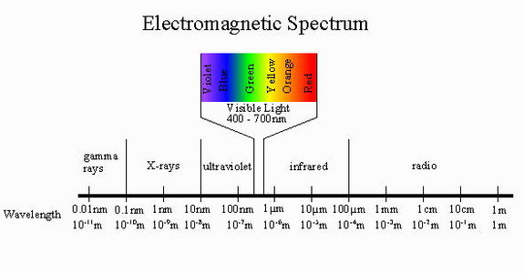 The optical portion of the electromagnetic spectrum visible to our eyes runs from approximately 400 nanometers to 700 nanometers in photon wavelength. Some bacteria can make use of long-wavelength, lower-energy light in the infrared portion of the spectrum.
