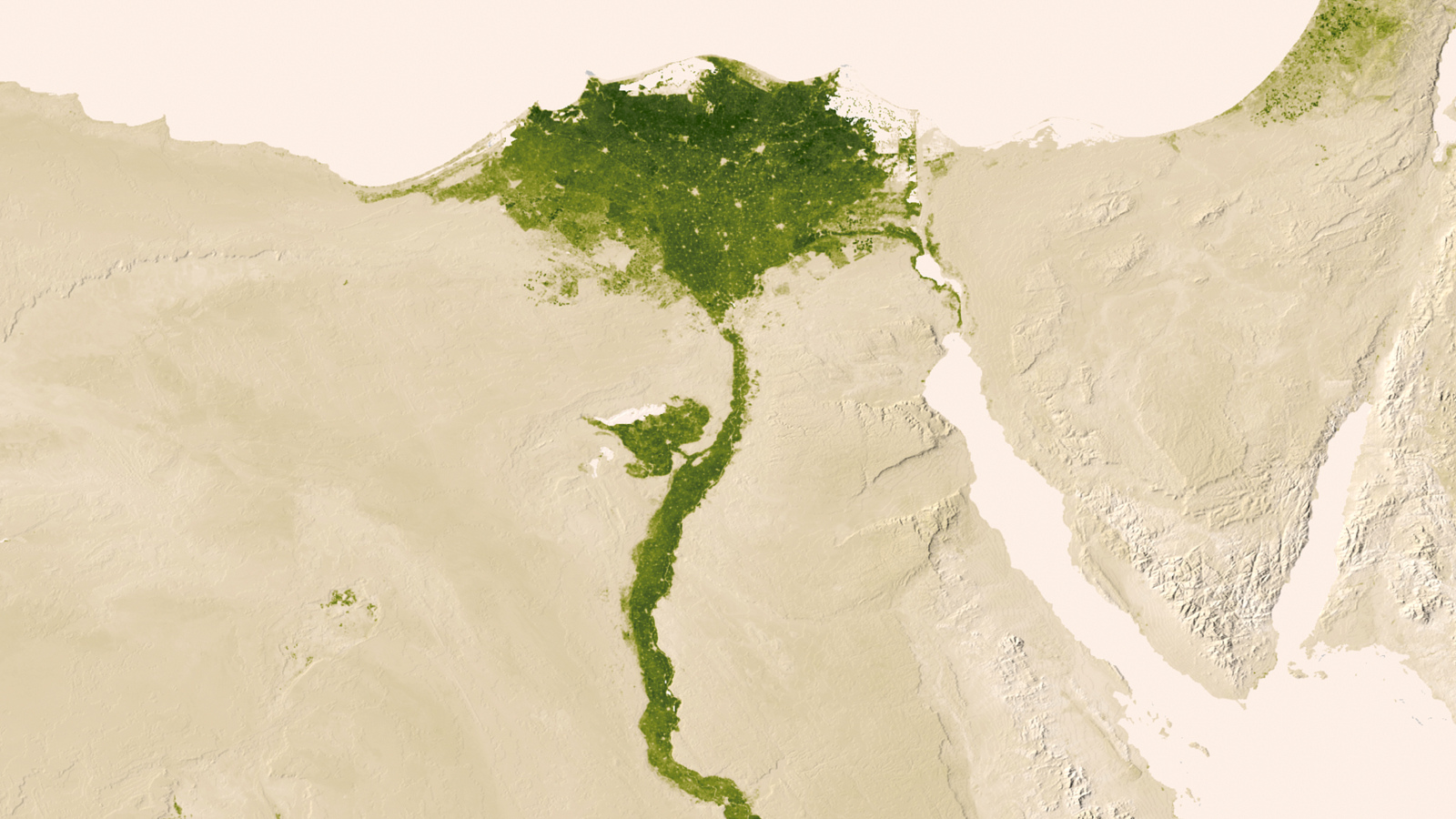 Herbal Earth: Nile Delta