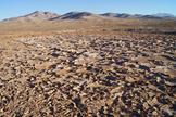 A dry lake bed in Chile's Atacama Desert. Scientists studying life in the Atacama have identified ways that microbes cope with extremely dry environments.