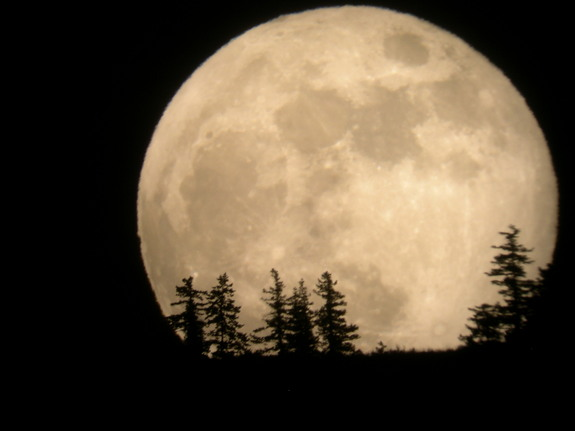 Supermoon Rises in Weekend Night Sky Sunday