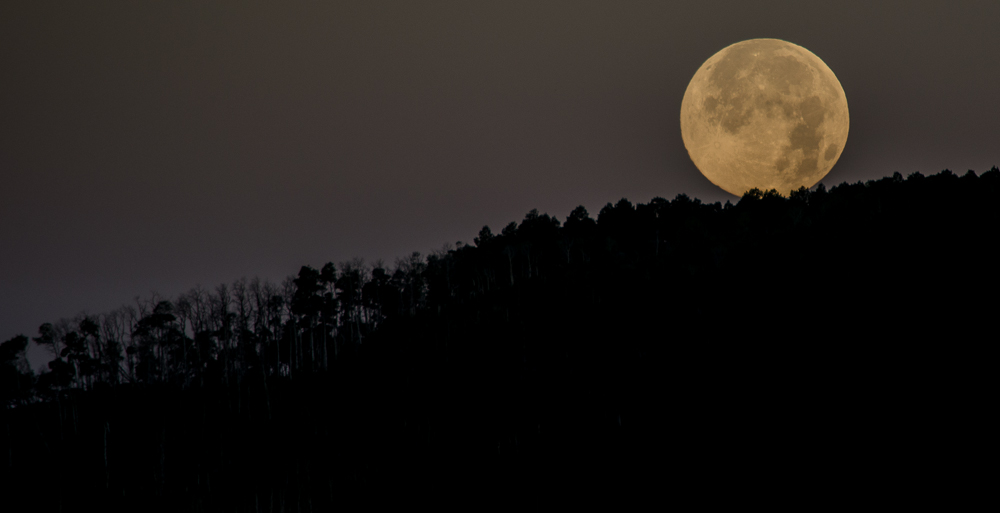 Supermoon Climbs Over Grand Mesa National Forest