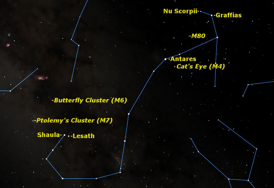 Weekend Stargazing: Celestial Scorpion Reigns in Night Sky