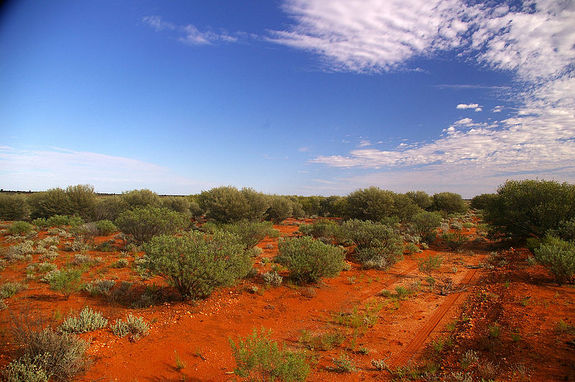 Australia's red soil might mimic the soil of Mars.