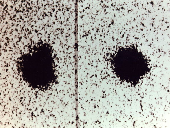 "Charon is visible as a ""bump"" moving around Pluto in the moon's discovery images, taken with the 1.55-meter (61-inch) Kaj Strand Astrometric Reflector at the U.S. Naval Observatory's Flagstaff Station in 1978."