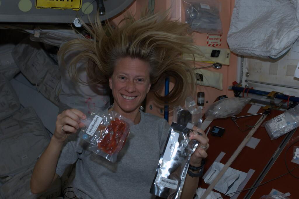 Astronaut Nyberg's International Space Station Dessert
