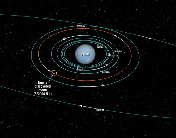 This diagram shows the orbits of several moons located close to the planet Neptune. All of them were discovered in 1989 by NASA's Voyager 2 spacecraft, with the exception of S/2004 N 1, which was discovered in archival Hubble Space Telescope images taken from 2004 to 2009. Image released July 15, 2013.