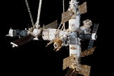 Russia's Mir space station was found to be home for mold growth.