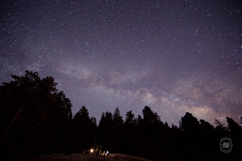 Starry Sky Over Sequoia National Park: Stargazer's Serene Scene