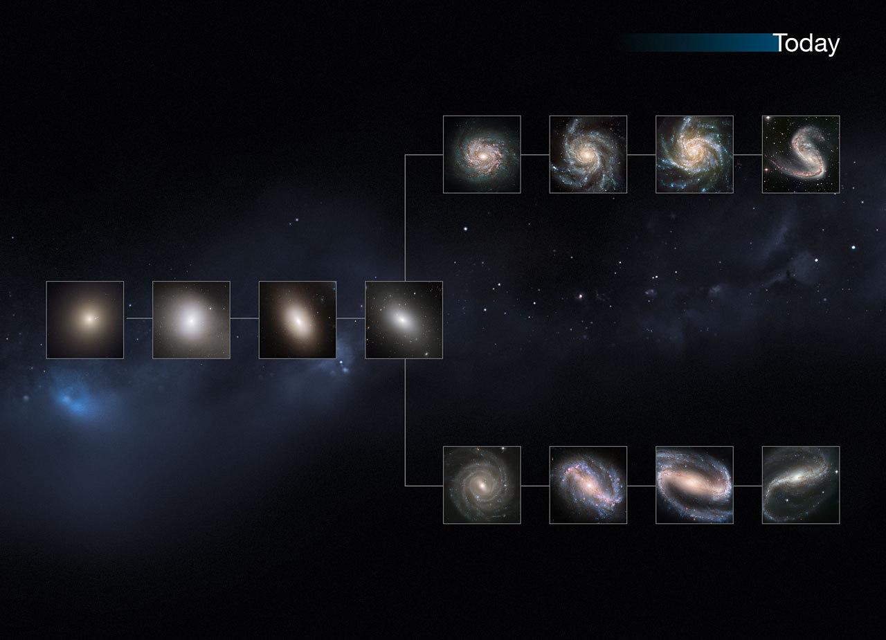 Present Day Universe