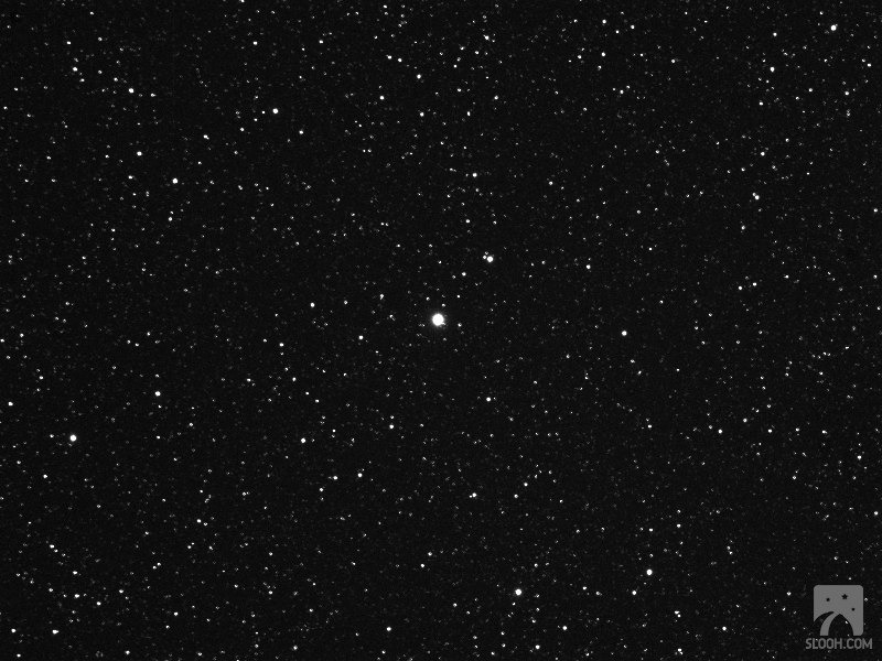 Nova Delphinus 2013 Imaged by Mihalic #2