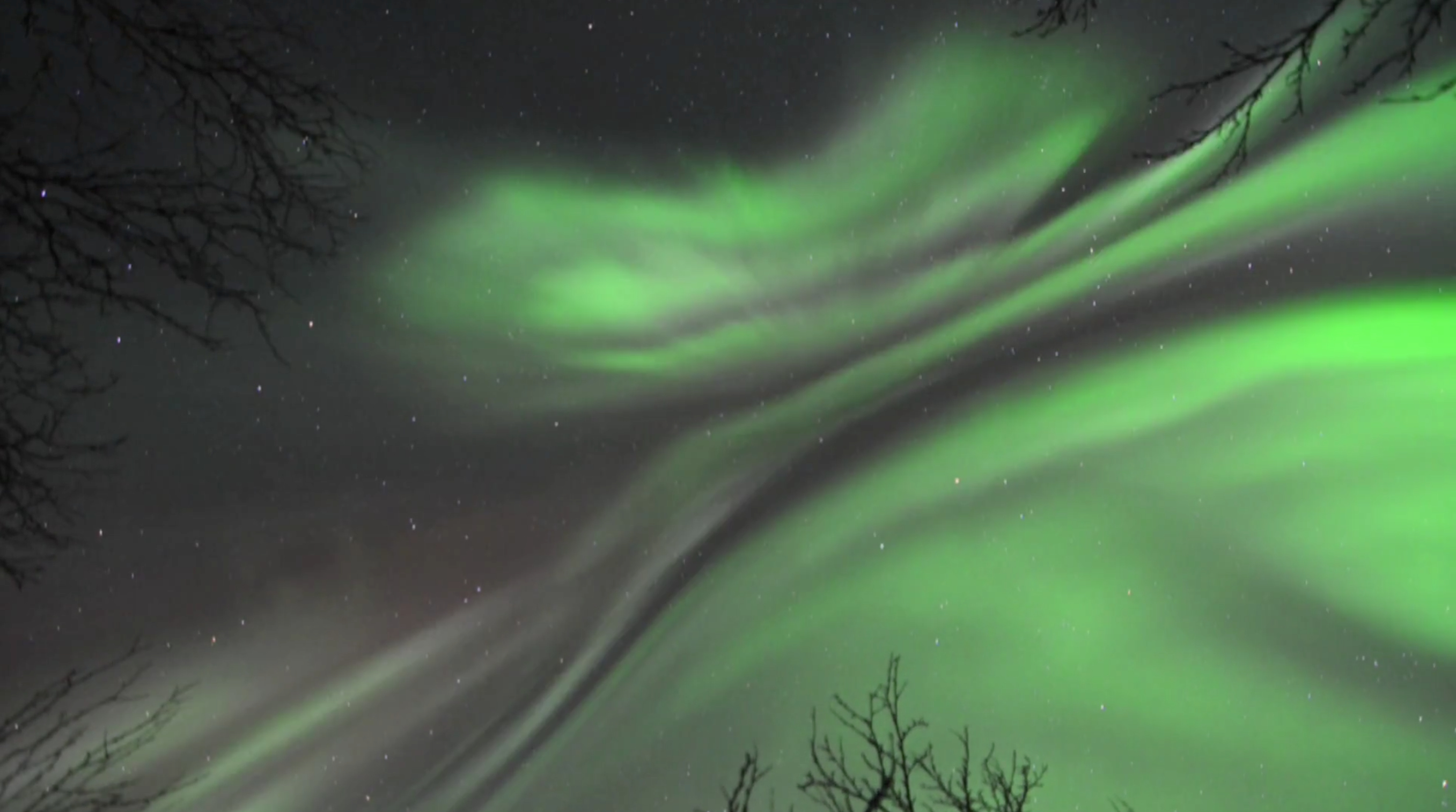 Aurora Over Swedish Park