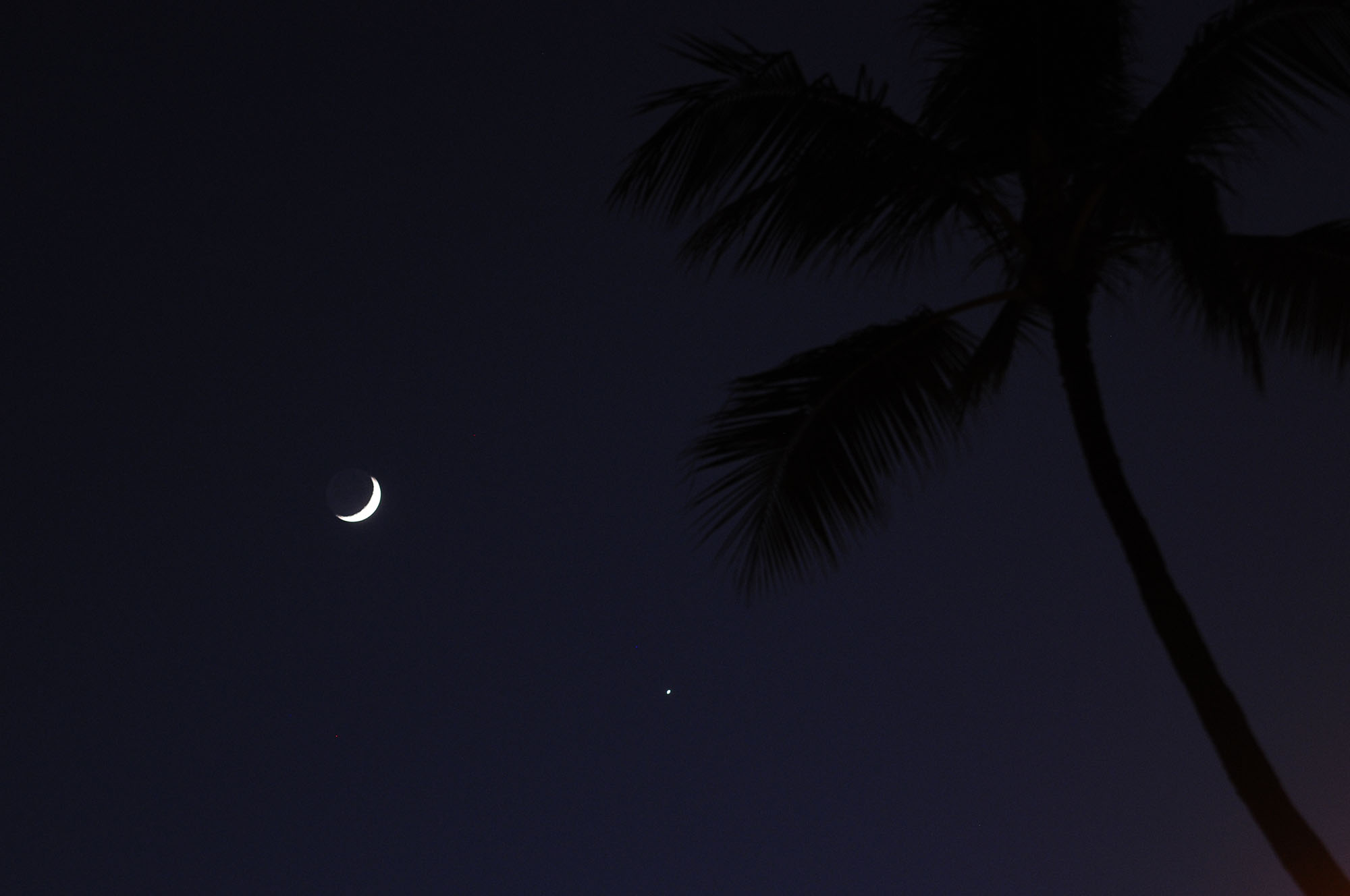 Aloha, Venus and Moon: Dazzling View by Wayne S.
