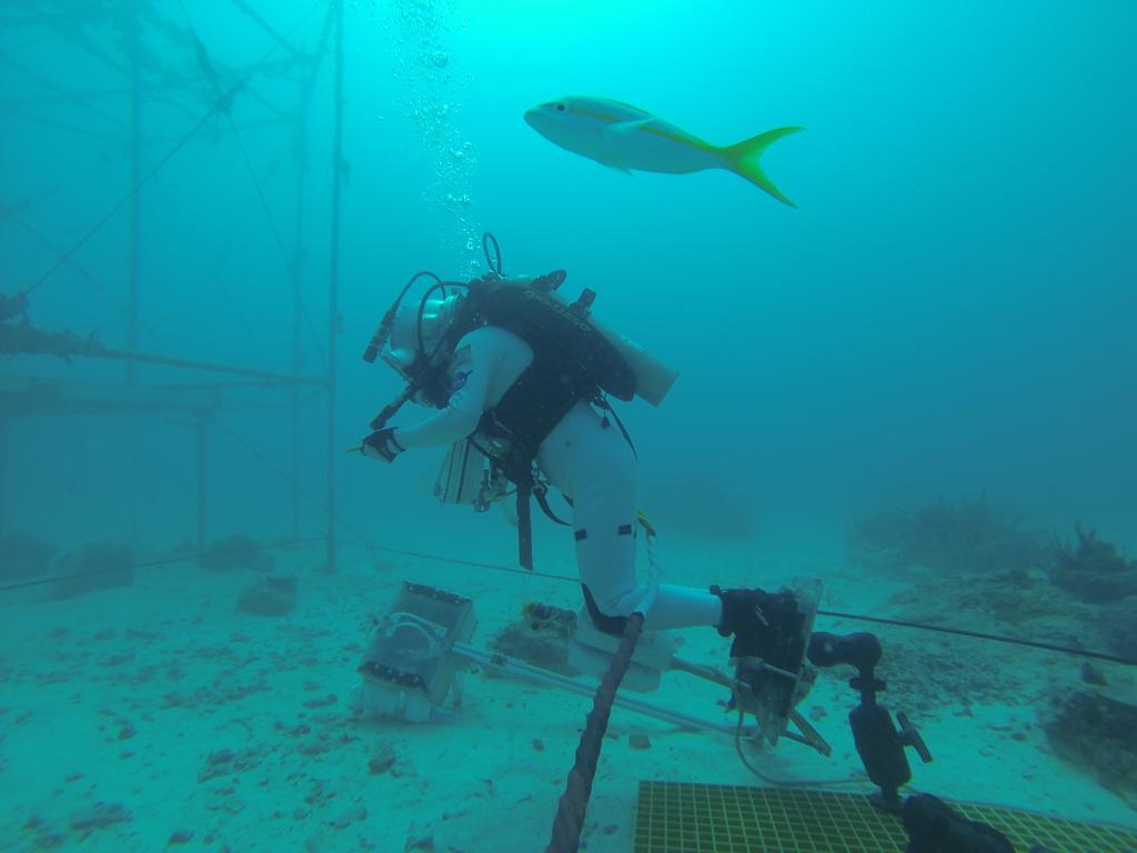 Undersea Astronauts Practice Spacewalks on Ocean Floor