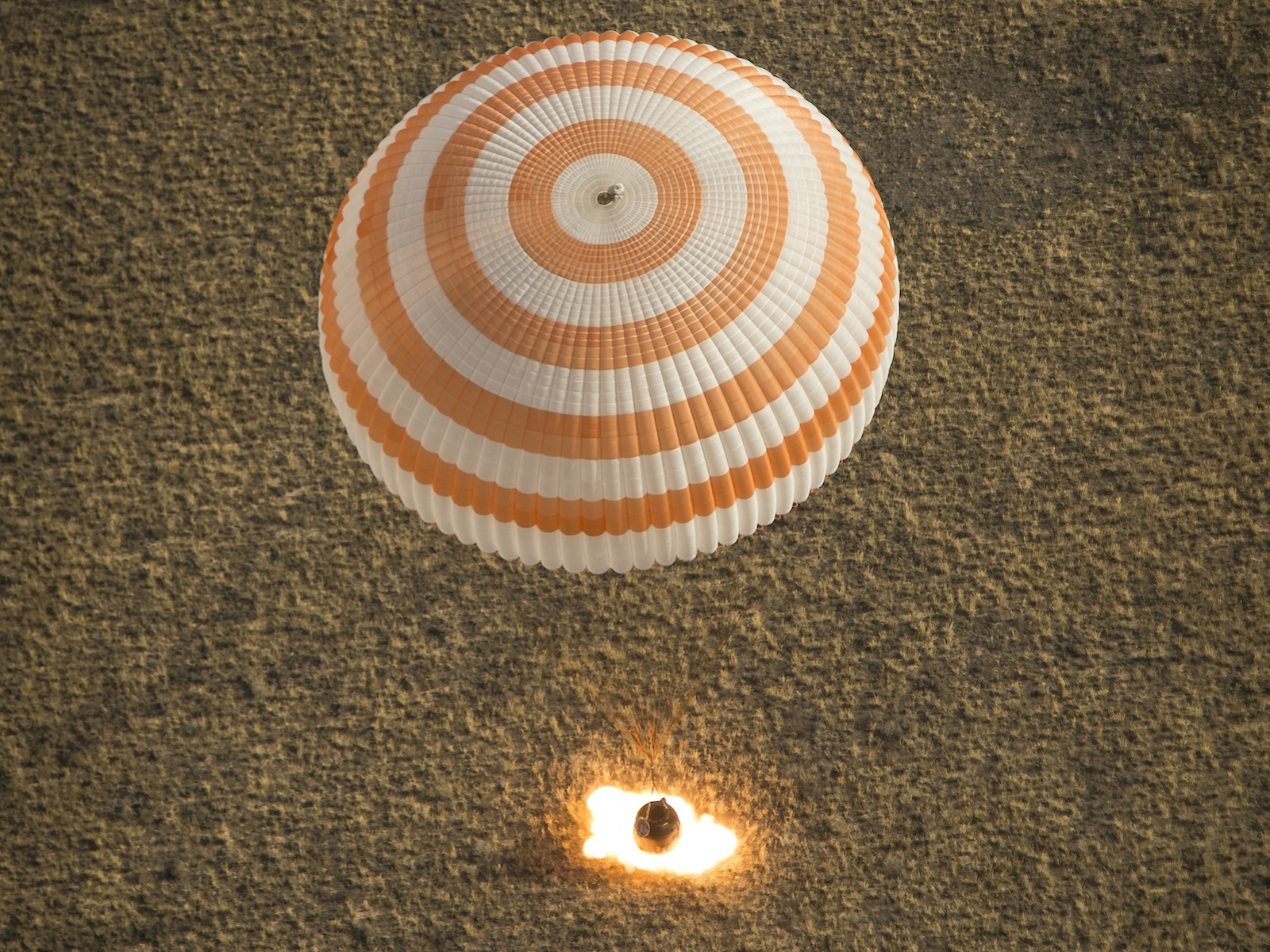 Soyuz Lands With Expedition 36 Crew 1600