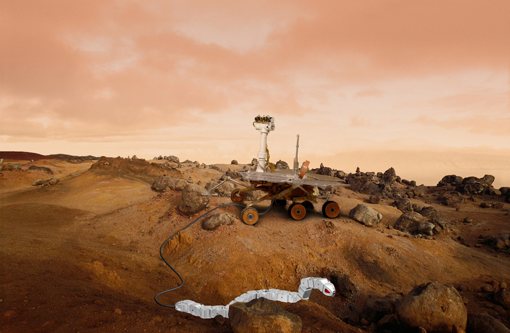 Slithering Snake Robots on Mars Could Aid Future Rovers